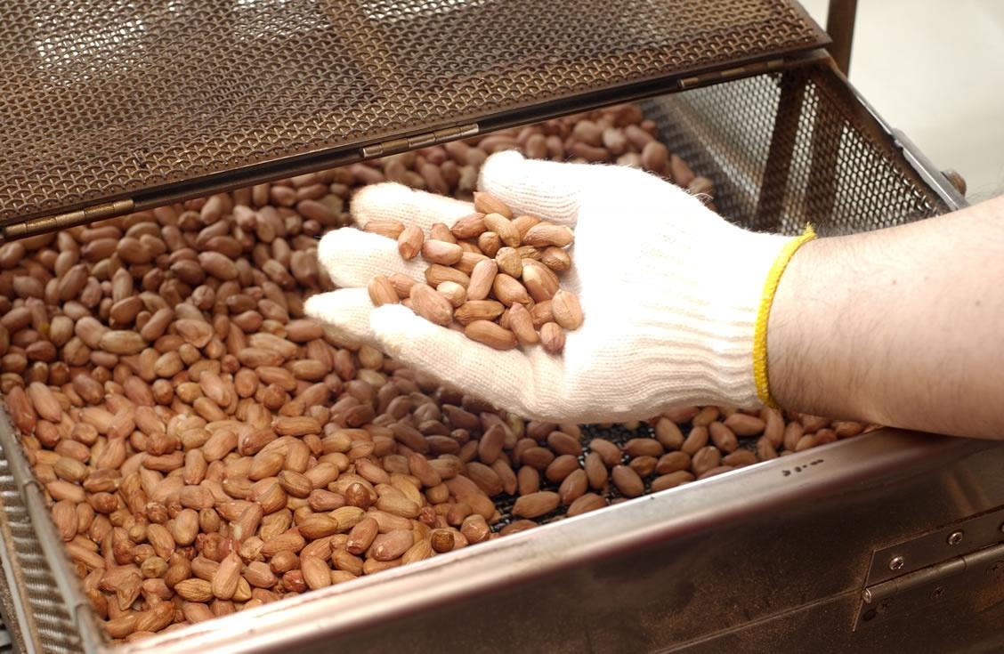 煎っている豆